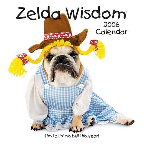 Download Zelda Wisdom