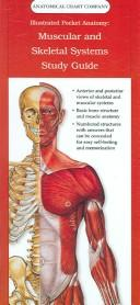 Download Illustrated Pocket Anatomy, Muscular And Skeletal Systems Study Guide